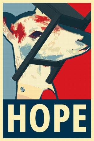 z17801477AA,Plakat-wyborczy-sarny